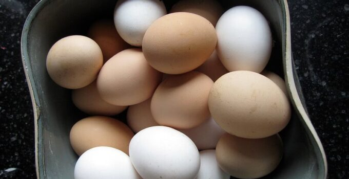 trứng trong tập gym